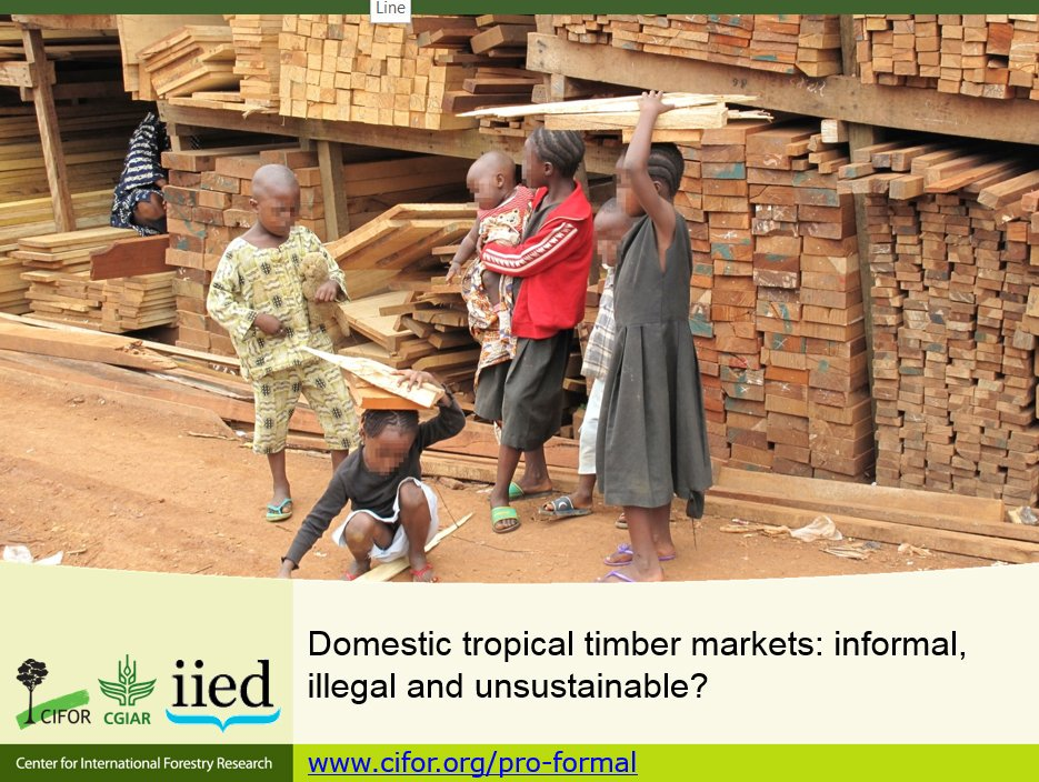 Paolo Cerutti @CIFOR speaking about domestic tropical timber markets: informal, illegal & unsustainable? #GlobalBPS https://t.co/tvfh9bN4er